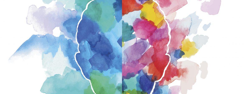 Programme of Activities - Brains Matter